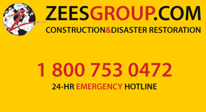 zees group